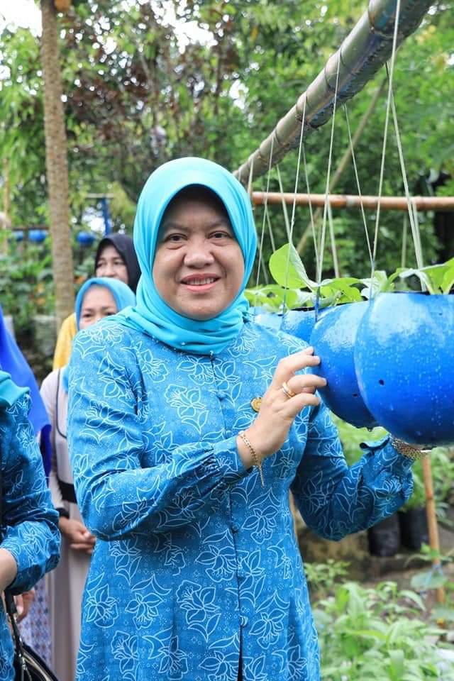 Hasnah Syam, Panen Sayur bersama Kelompok Wanita Tani di Kelurahan Mattapawalie