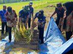 Hasil Petani di Kabupaten Gowa Mengalami Peningkatan