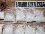 Kedapatan Selundupkan Narkoba, Menantu Ratu Dangdut Elvy Sukaesi di Tangkap Polisi