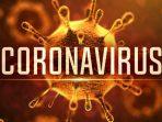 Pemerintah Indonesia Harus Mengambil Langkah Tegas Menyikapi Persoalan Wabah Coranavirus