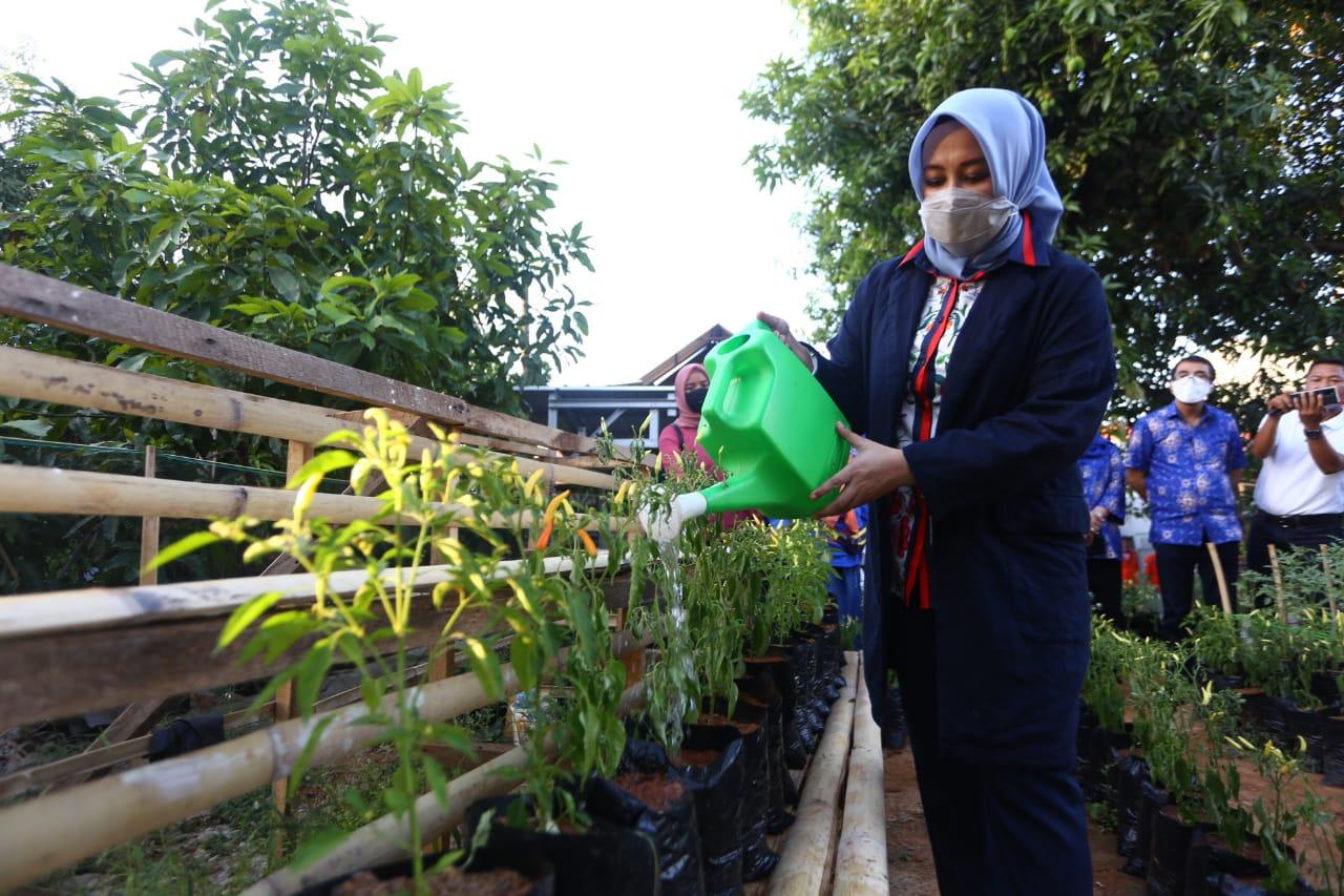 Idolakan Danny-Fatma, Kebun Warga Bakung Dinamakan Idamanta