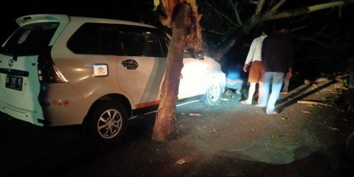 Gerak Cepat Tim SAR Batalyon C Pelopor Evakuasi Minibus Yang Tertimpa Pohon Tumbang